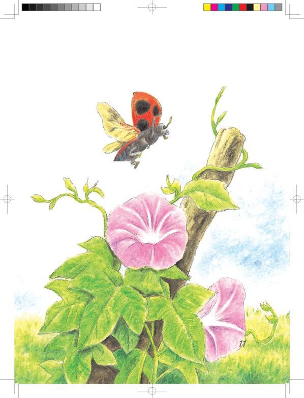 昆虫国画图片大全大图